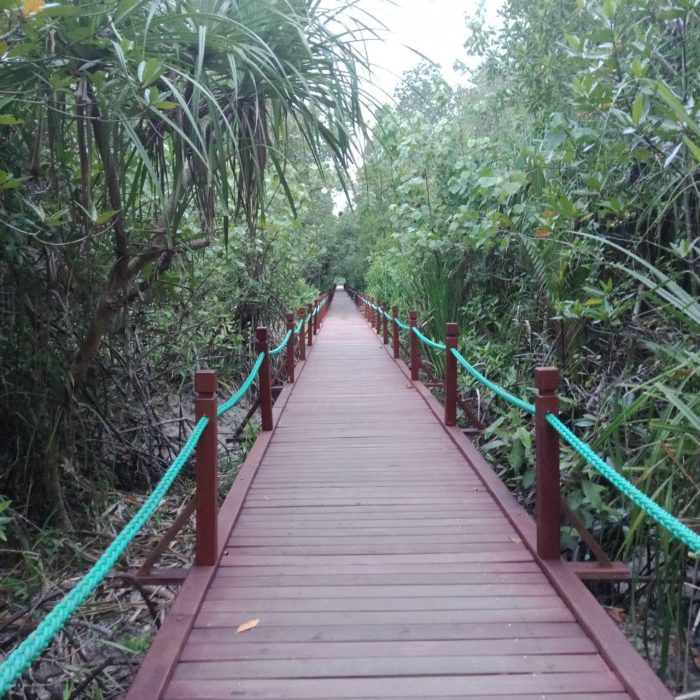 boardwalk setiu
