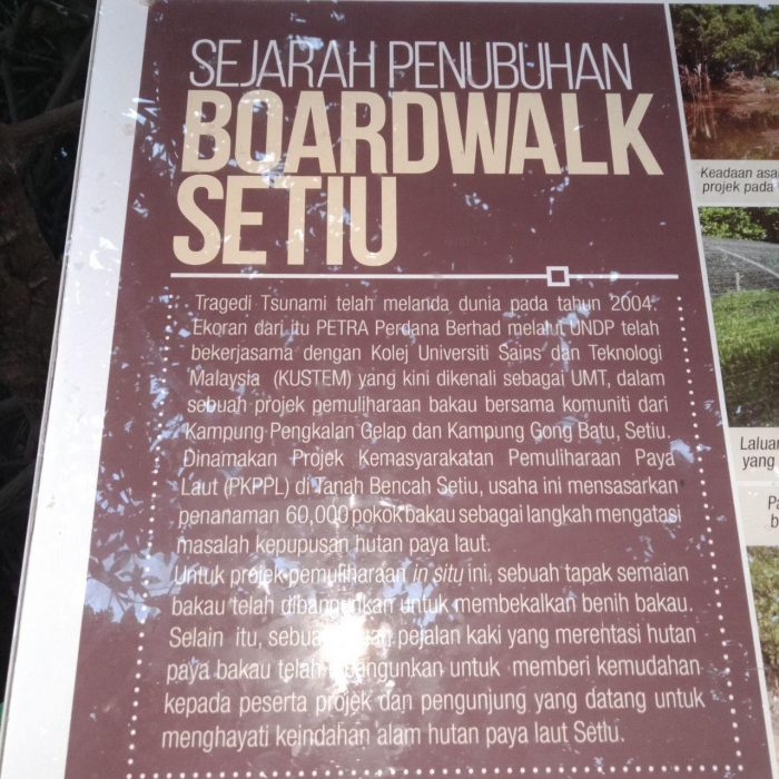 setiu wetland, boardwalk setiu, sejarah boardwalk setiu