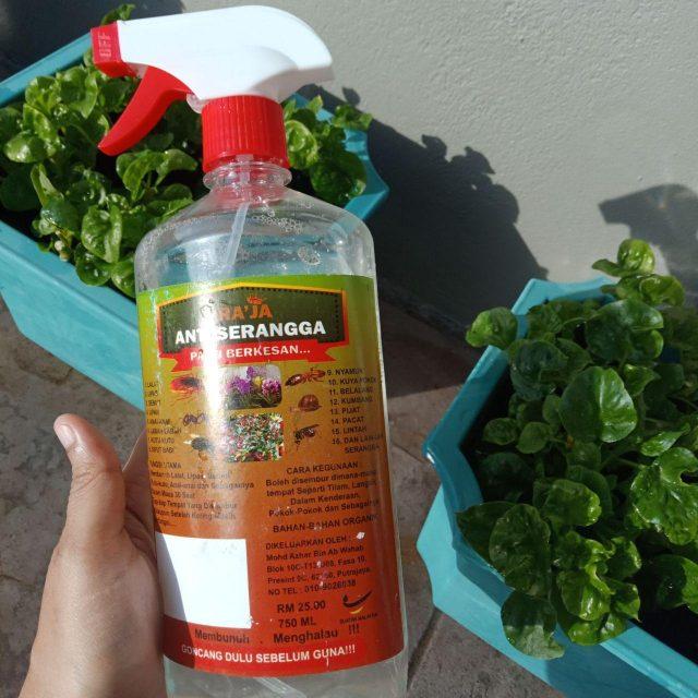 racun serangga organik